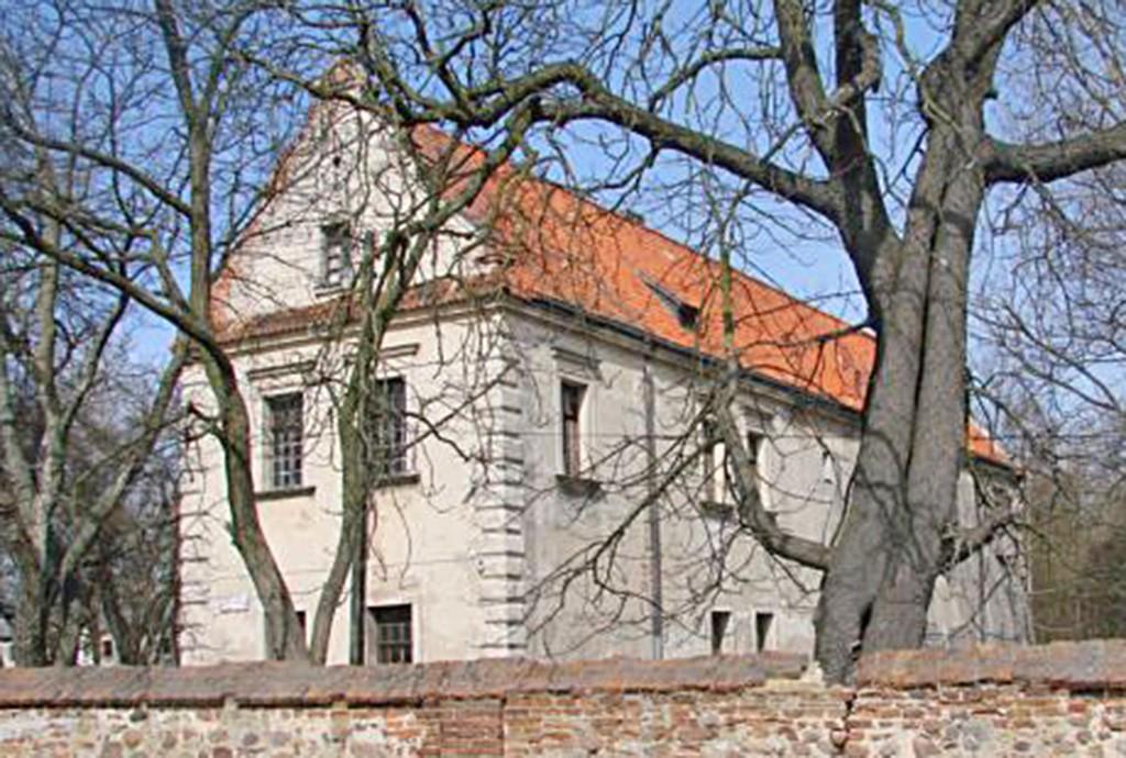 widok z ulicy na pałac w województwie łódzkim do sprzedaży