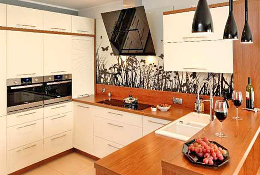 na zdjęciu ekskluzywnie wyposażona kuchnia w willi na wynajem w Szczecinie