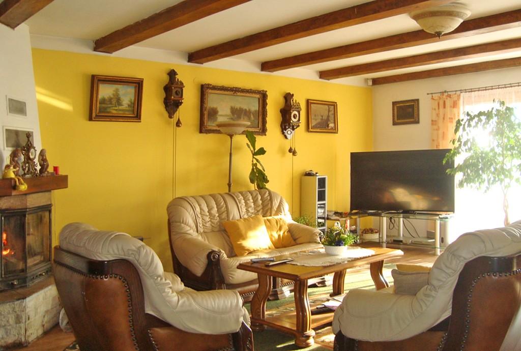 na zdjęciu salon z kominkiem w luksusowym dworze do sprzedaży w Gorzowie Wielkopolskim