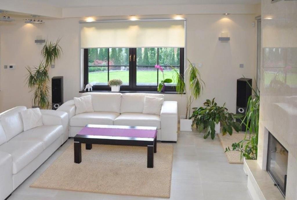 zdjęcie przedstawia luksusowy salon w ekskluzywnej willi do sprzedaży w Szczecinie