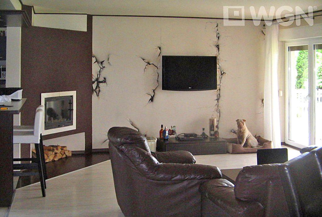 salon w luksusowej willi do sprzedaży w okolicach Ostrowa Wielkopolskiego