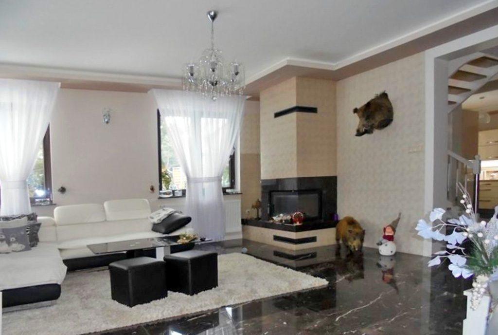 nowoczesny salon z kominkiem w ekskluzywnej willi do sprzedaży Grudziądz (okolice)