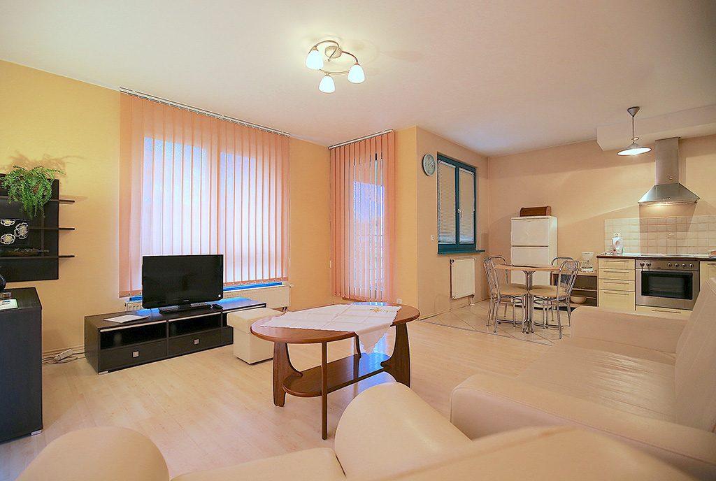 prestiżowe wnętrze salonu w ekskluzywnym apartamencie do wynajęcia Szczecin