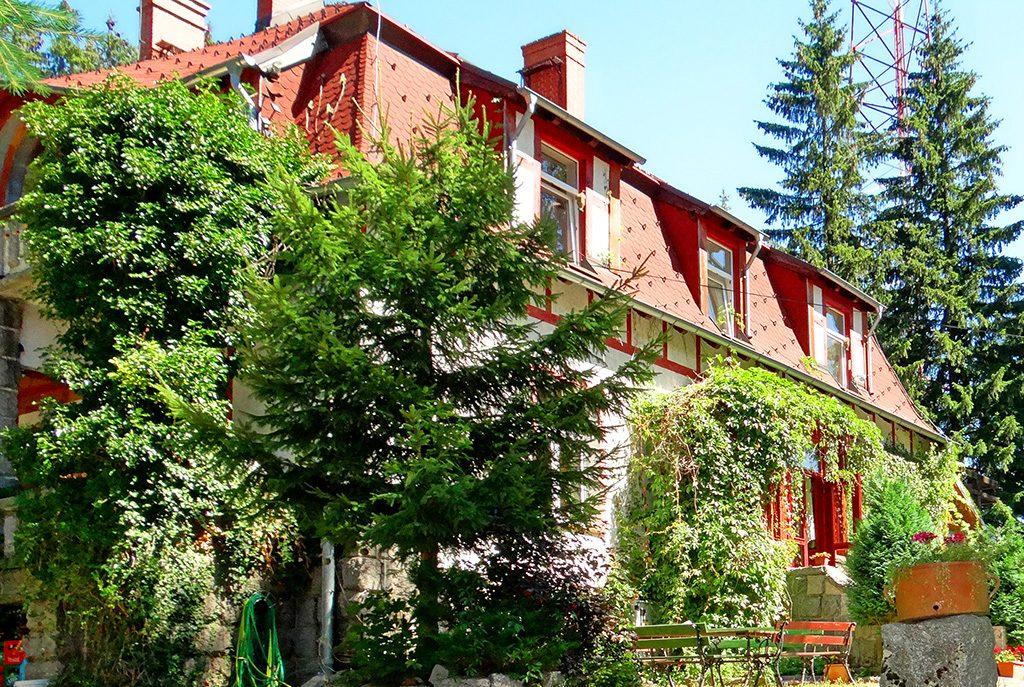 na pierwszym planie ogród okalający luksusową willę na sprzedaż Szklarska Poręba