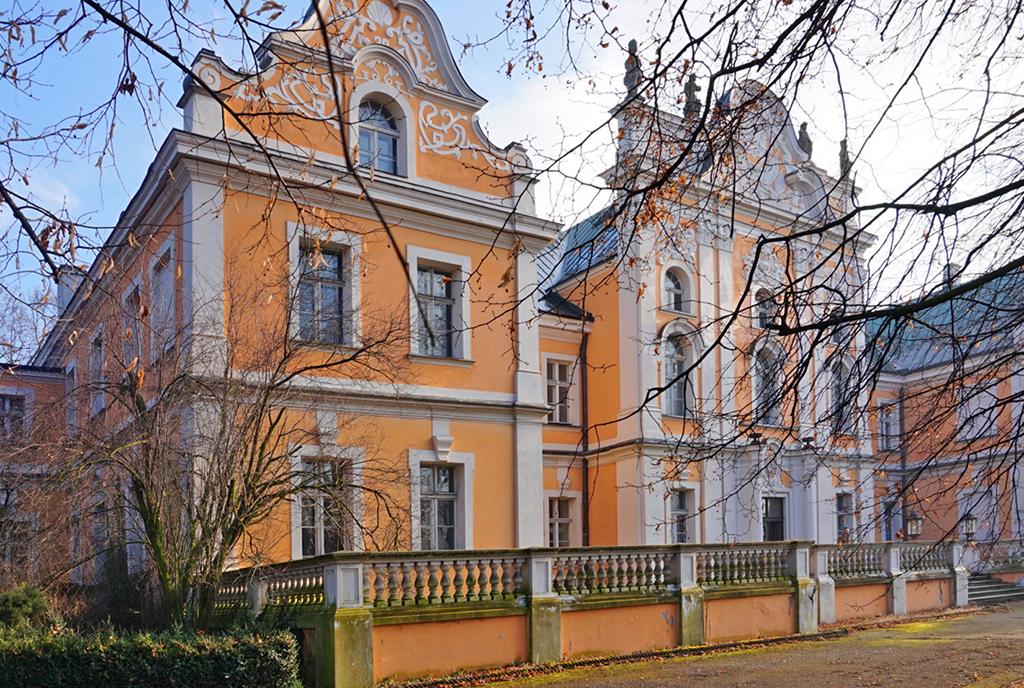 imponująca bryła ekskluzywnego pałacu do sprzedaży Poznań (okolice)