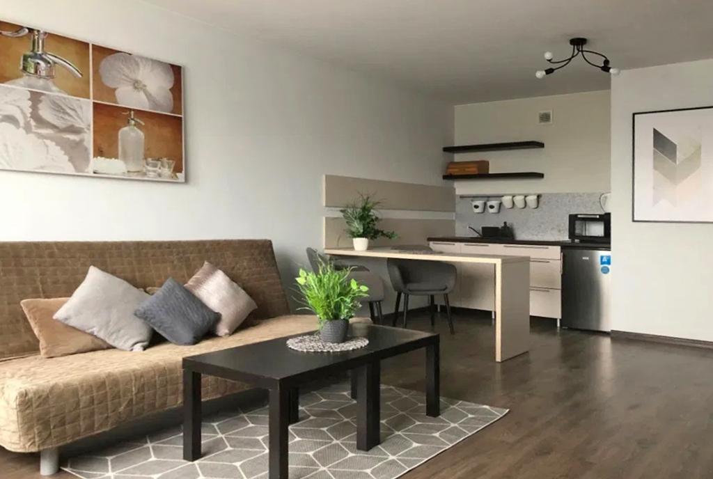 zdjęcie prezentuje pokój dzienny oraz aneks kuchenny w luksusowym apartamencie do wynajmu Szczecin
