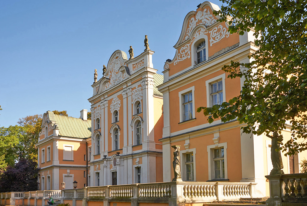 zapierająca dech w piersiach bryła luksusowego pałacu na sprzedaż Poznań